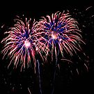 Independence Day by Terri~Lynn Bealle