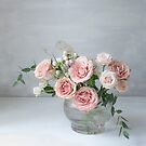 Winter roses  by Cristina Colli