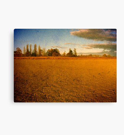 Parched - Dangars Lagoon, Northern Tablelands, NSW, Australia Canvas Print
