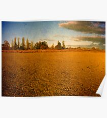 Parched - Dangars Lagoon, Northern Tablelands, NSW, Australia Poster