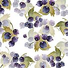 Black currant by Gribanessa