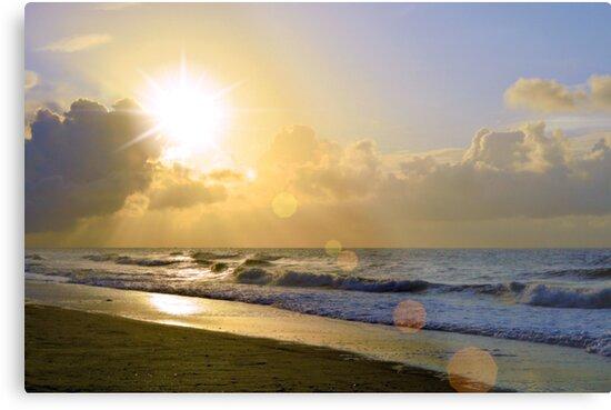 Jeweled Sunrise by Dawne Dunton