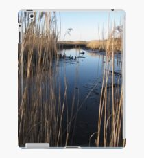 Wetlands At Low Tide iPad Case/Skin