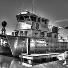 Coastal Carolina University Coastal Explorer Research Vessel by TJ Baccari Photography
