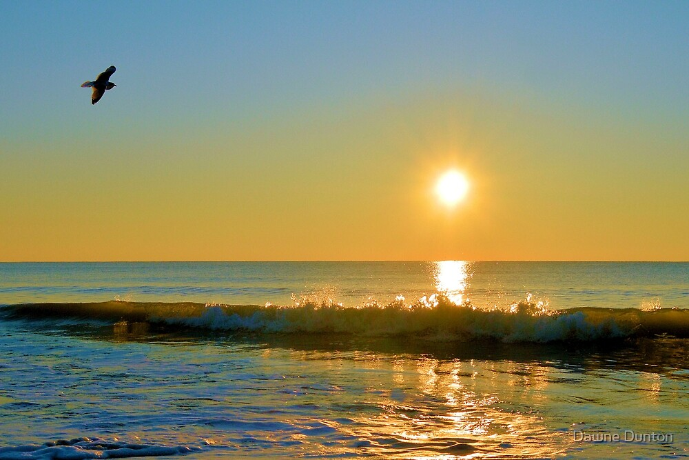 Shimmering Sunrise by Dawne Dunton