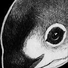Leucism: Vaquita by NoelleMBrooks