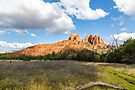 Cathedral Rock From Open Field by eegibson