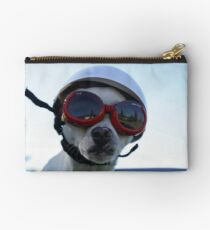 Chihuahua and the Bike Safety Message Studio Pouch