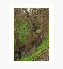 The winding creek. Art Print