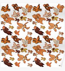 Fancy Goldfish Pattern Poster
