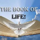 The Book of Life! by sunshine0