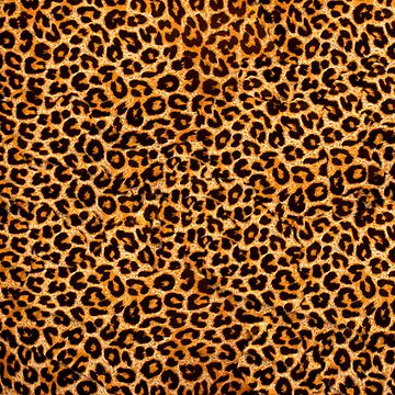 Leopard Print by Ange26