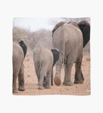 THE 2016 DROUGHT AND THE AFRICAN ELEPHANT - DESPERATELY SEEKING FOOD Scarf