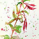 Fresh Fuschia by Jennifer J Watson