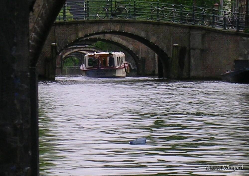 bridges by sharon wingard