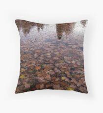 Herfst in de vijver Throw Pillow