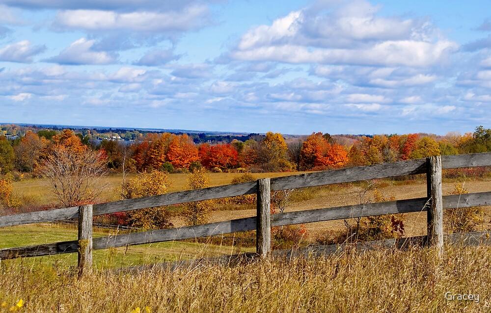Farmer's Autumn by Gracey