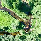 Aerial view of canoes on Marycha river on a sunny day by Lukasz Szczepanski