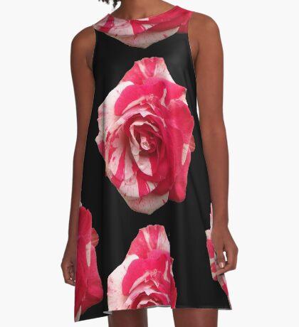 eine zauberhafte Rose, rot, weiß, Rosen, Sommer A-Linien Kleid