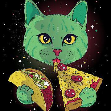 Cosmic Cat by litteposterco