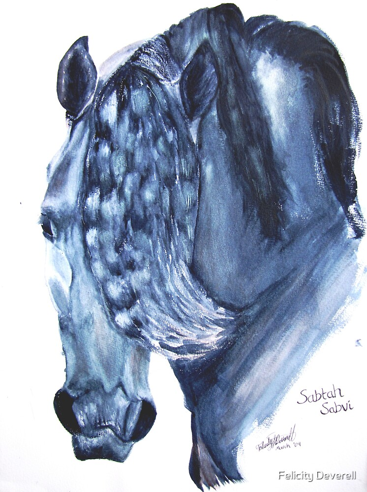 Arabian Stallion by Felicity Deverell