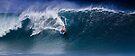 Bodyboarder At Banzai Pipeline  by Alex Preiss