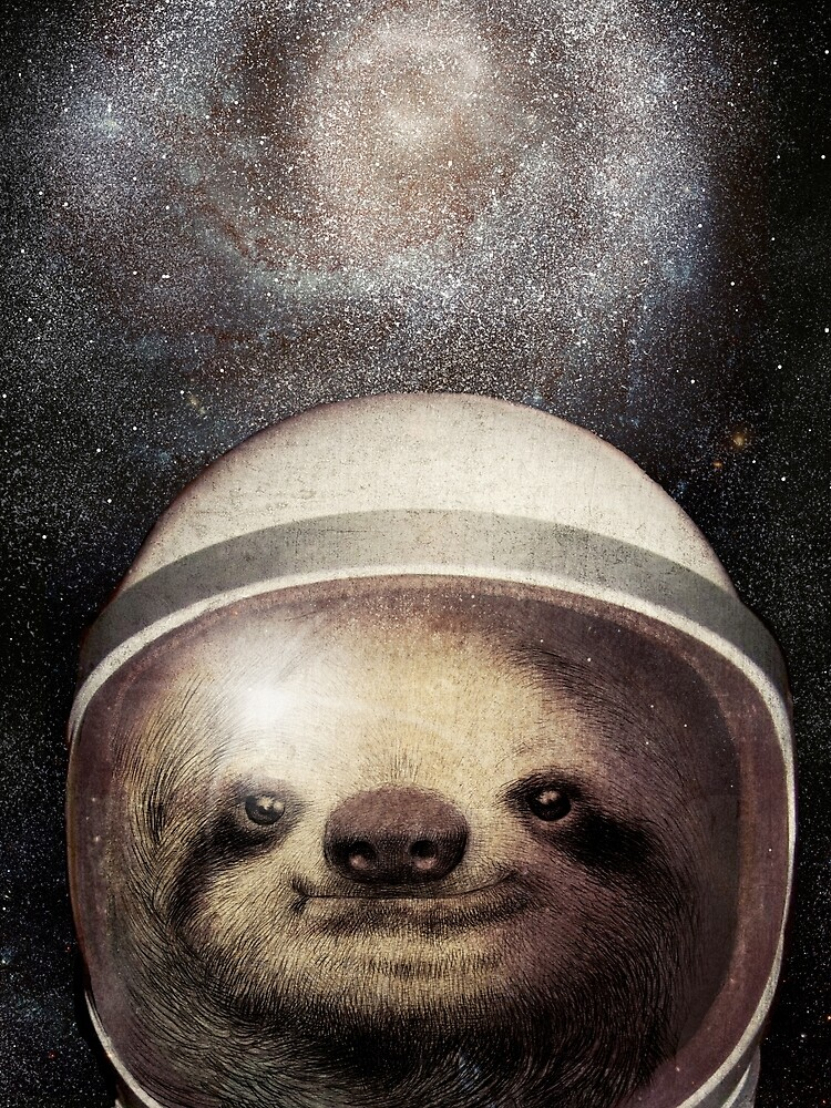 Space Sloth by opifan