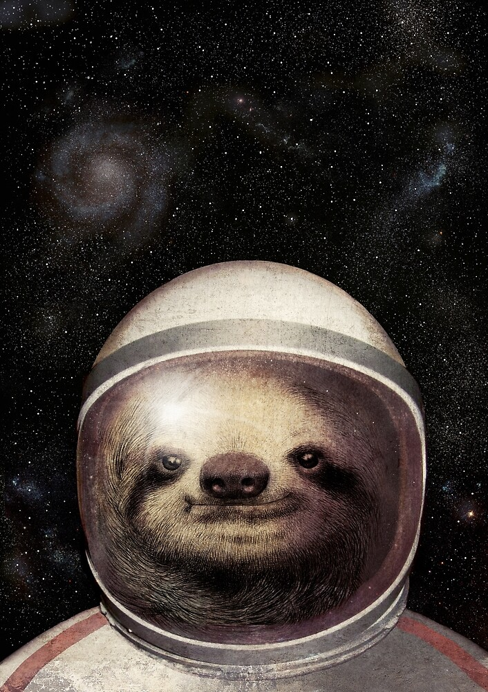 Space Sloth by Eric Fan