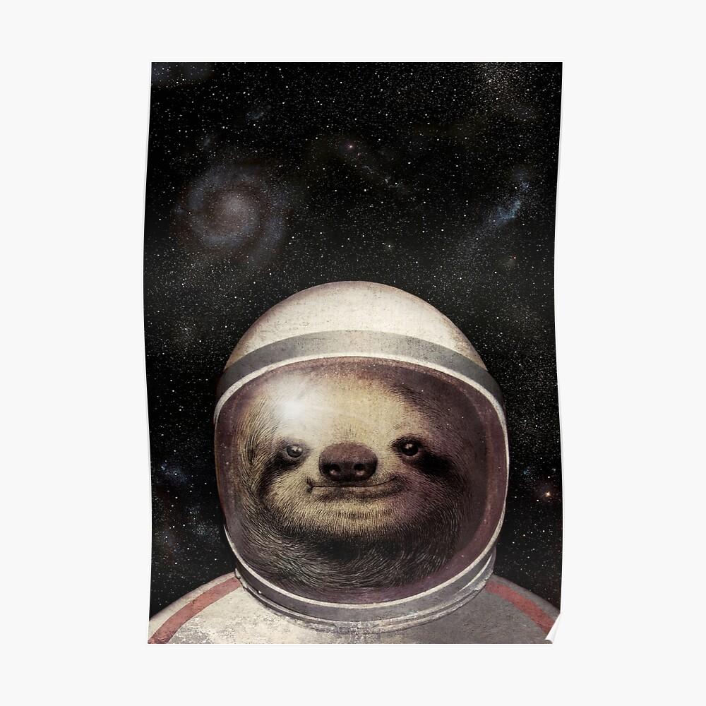Weltraumfaultier Poster
