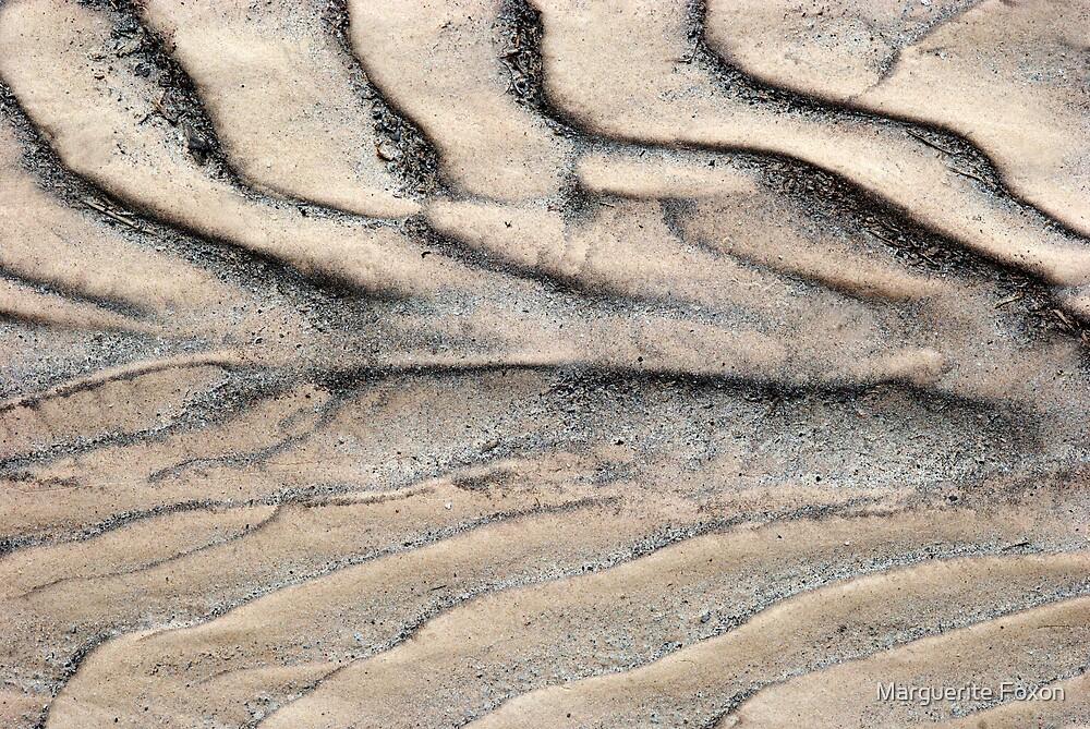 A Dry & Barren Land by Marguerite Foxon