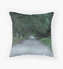 Plantation Road Throw Pillow