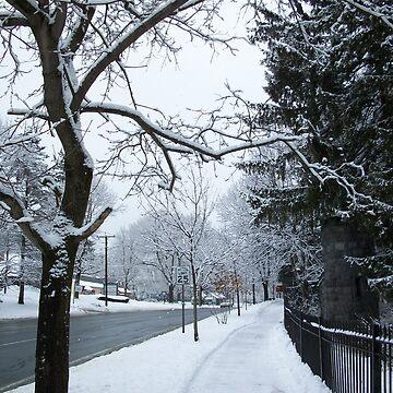 Snowy Way by ladymalchav