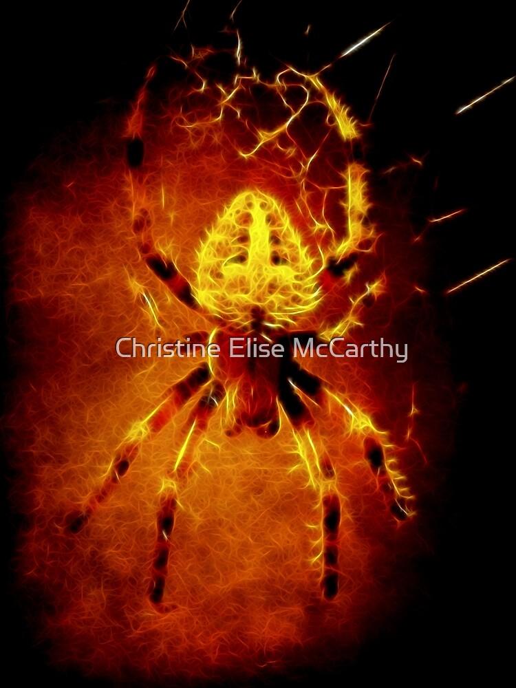 Spider by jdempsey