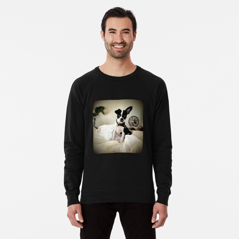 Keep an Ear To the Wind Lightweight Sweatshirt