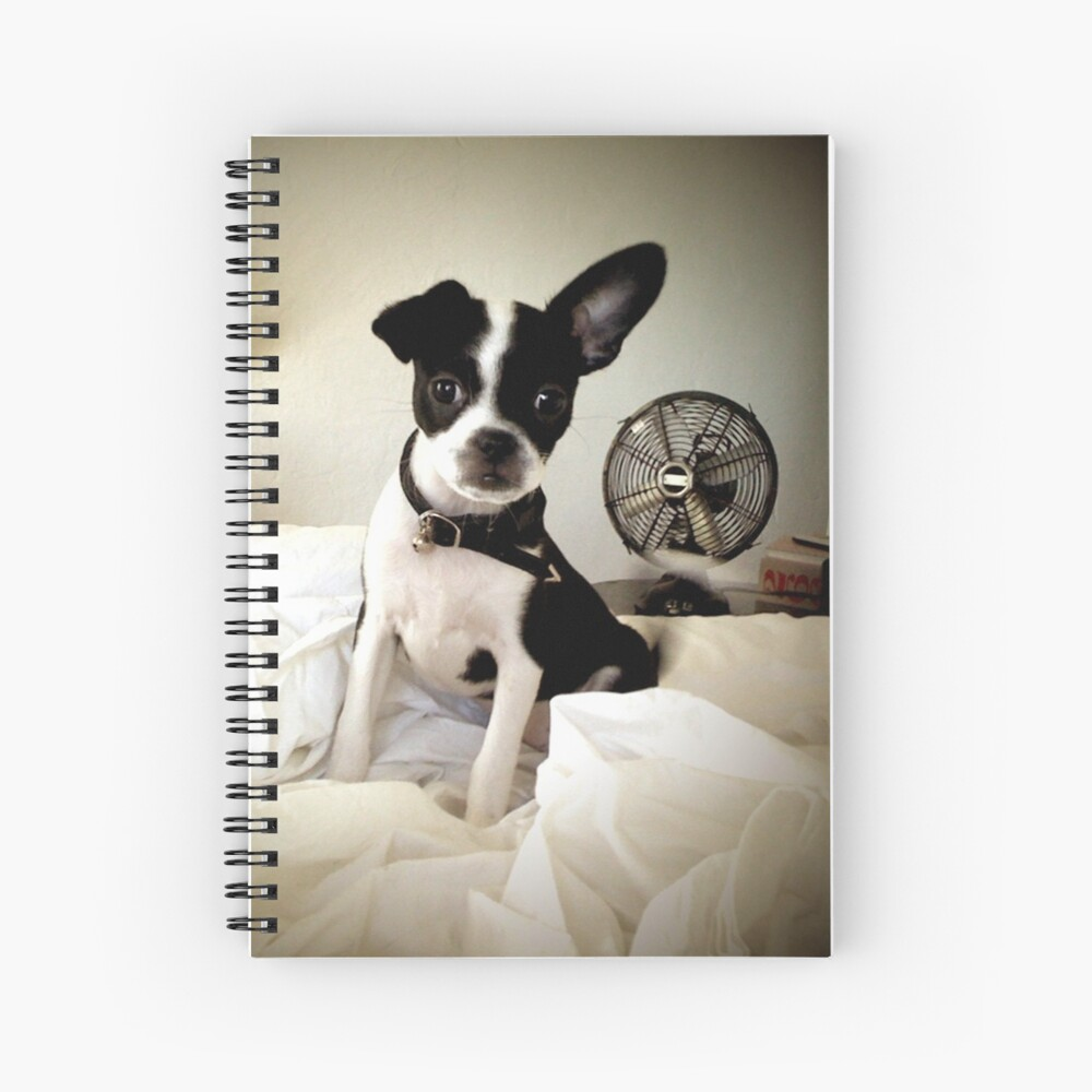 Keep an Ear To the Wind Spiral Notebook