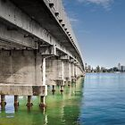 Forster Bridge 7878 by kevin Chippindall