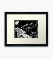 Greenery Framed Print
