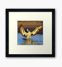 """ Wings Ahoy "" Marlo Vic. Framed Print"