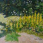 Shelagh's Garden by Susan Scott