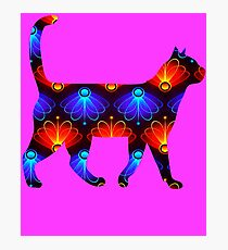 Blue and red spiral cat2 Photographic Print