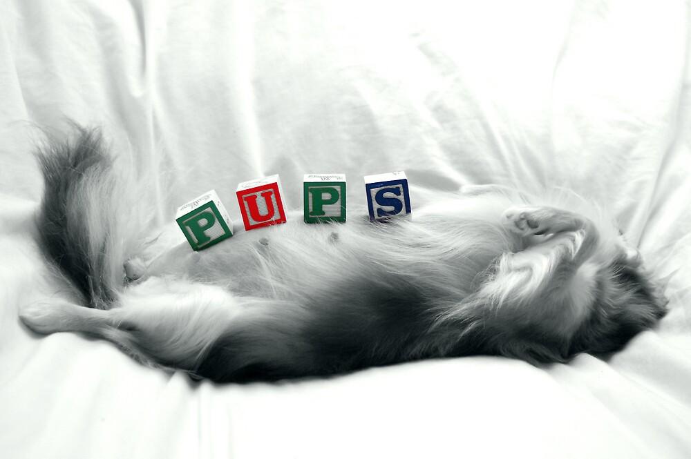 Pups by NaturesOptimist