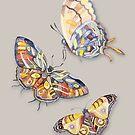 «Mariposas, acuarela, arte» de Ruta Dumalakaite
