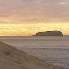 Budgie beach sunset by kristian smith