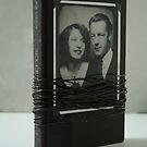 Artist Book 5 (sex crimes) by Stephen Sheffield