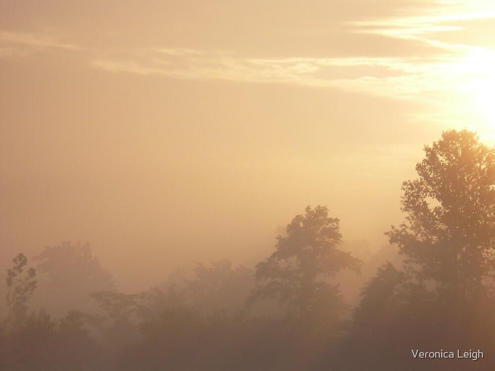 Sunrise Fog by Veronica Schultz