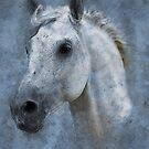 Horse - Vintage Watercolor by artyfarts