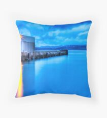 Victorian Waterway Throw Pillow