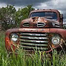 VINTAGE FORD FARM TRUCK  by Theresa Tahara