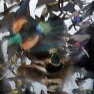 Aviary by John Douglas