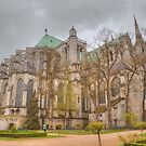 Chartres Cathedral by Michael Matthews